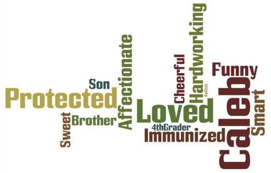 Caleb Word Cloud
